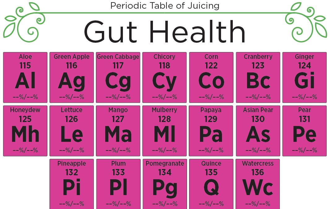 Understanding Gut Health – Prevention, Healing & Juicing